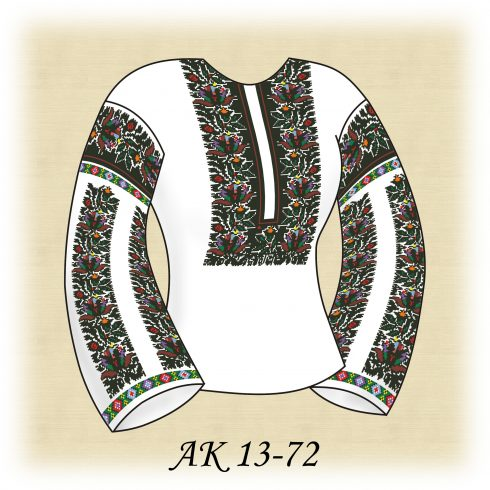 АК 13-72 Мальовнича